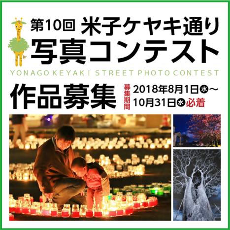 第10回米子ケヤキ通り写真コンテスト作品募集