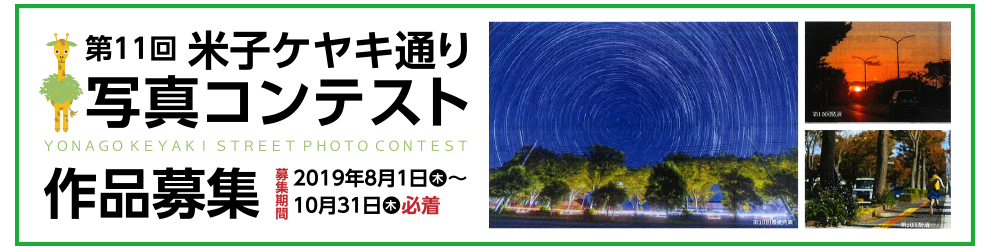 第11回米子ケヤキ通り写真コンテスト作品募集!!